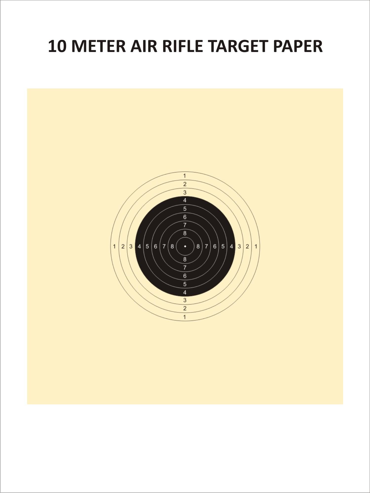 Air Rifle Target(10 Metres)