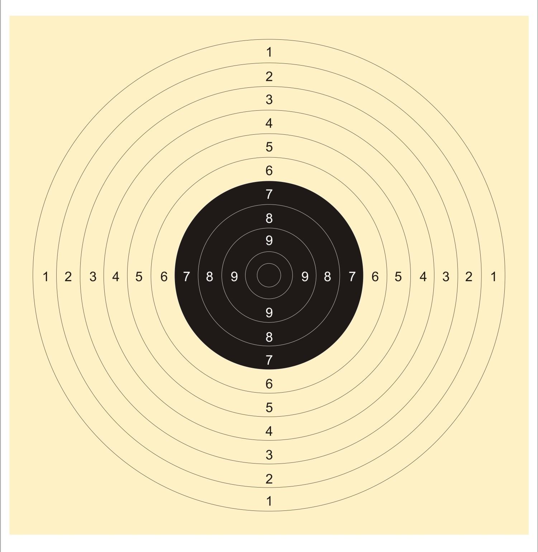 Center Fire Precission Target(25 Metres)