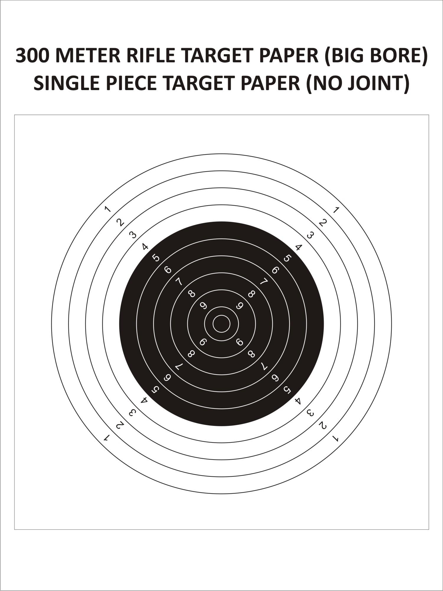 Big Bore Target(100 Metres)
